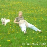 Westie Cluj – Astro