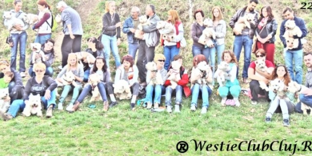 Prima Intalnire Westie Cluj din 2014