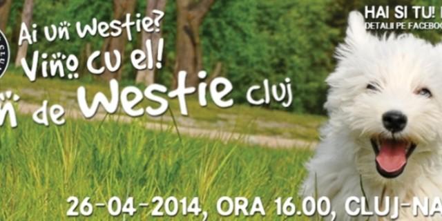 Intalnirea Aniversara 1 An Westie Cluj