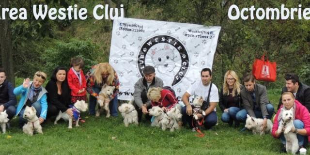Intalnirea Westie Cluj – Toamna 2015