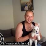 Westie Bistrita - Puff