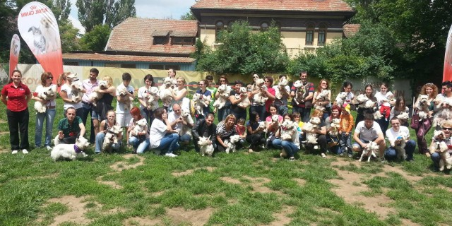 Intalnirea nationala Westie Romania