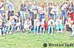 A4a intalnire Westie Cluj [22.03.2014]