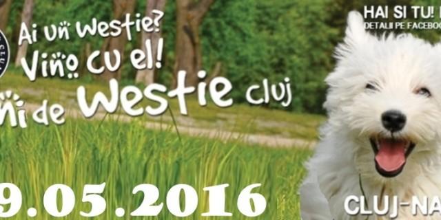 Intalnirea Aniversara 3 Ani Westie Cluj