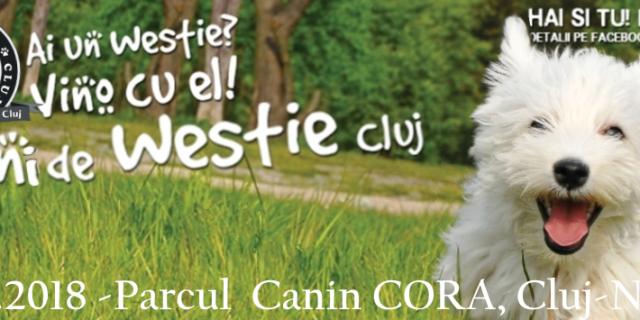 Intalnirea Aniversara – 5 Ani Westie Club Cluj